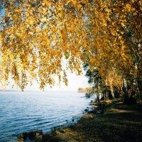 Наша осень :: Светлана Игнатьева