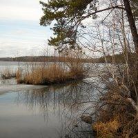 Весна :: Светлана Игнатьева