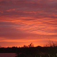 закат :: елена федорова
