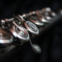 флейта :: Анна Михайлова