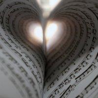 музыка сердца :: Анна Михайлова