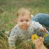 маленький охотник :: Pavel Kartsev