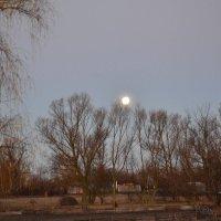 луна :: Иван Муха