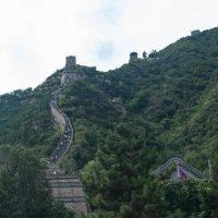 Великая китайская стена :: Владимир Мартыщенко