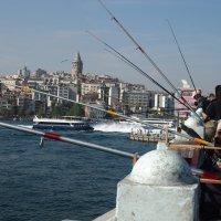 Рыбаки на Галатском мосту :: Николаева Наталья