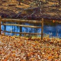 Fall :: Яков Геллер