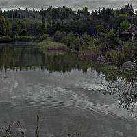 Вечер у пруда :: Сергей Григорьев