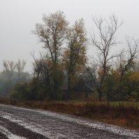 Видишь,падают дожди октября... :: Александр Гризодуб