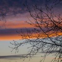 рассвет за окном :: Евгений Лавров