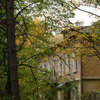 Старый дом. :: Ирина Чикида