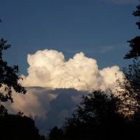 Грозовое облако. :: Геннадий Кульков