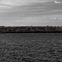 осеннее озеро :: Sergey Ganja