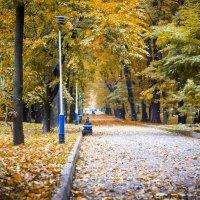 Осінній парк :: Вано Саранчук