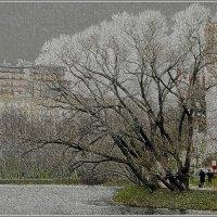 Гобеленовый пейзаж :: Olenka