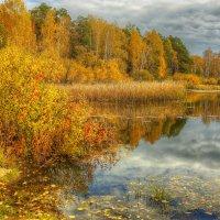 Яркая осень :: Олег Сонин