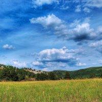 Летний пейзаж. :: Владимир