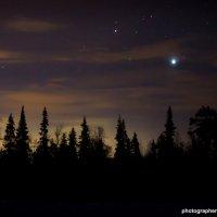 Звёздная ночь :: Алиса Кондрашова