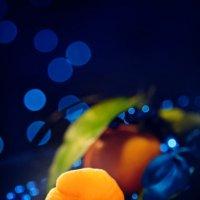 Новогодняя тема - мандарины. :: Анастасия Кононенко