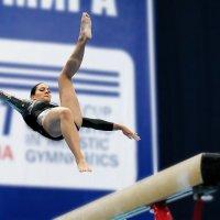 Поймать равновесие... :: Валерий Шейкин