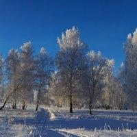 Почти зима :: Николай Мальцев