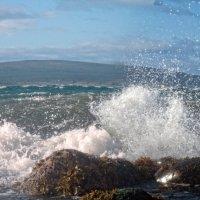 В синем море, белой пене... :: Artyom S