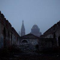 Позади Петербурга :: Екатерина Кожевникова