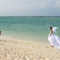 Мальдивы - медовый месяц 34 :: Александр Беляков