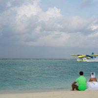 Мальдивы - медовый месяц 31 :: Александр Беляков