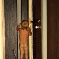 не надо помощи я сам дверь открою :: Алексей Голузов