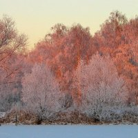 Мороз и солнце. :: Victor Klyuchev
