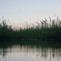Прекрасное озеро из обычной лужи :: Марина Гаель