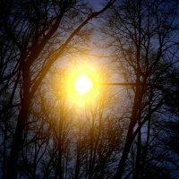 Свет во тьме :: Kondi 3000
