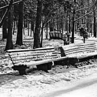 В парке :: Владимир Корольков