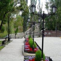 в парке :: Константин Трапезников