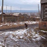 там,где люди живут... :: зоя полянская