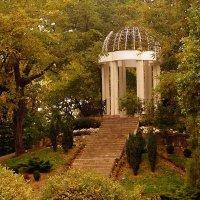 В городском саду ... :: Serega Денисенко