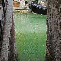 Чистые воды Венеции... :: Людмила Шустова