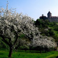 Весна. Замок LORCH  Германия. :: ФотоЛюбка *