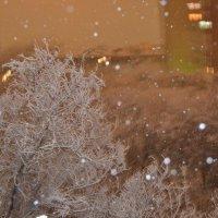 Первый снег :: NAZERKE OSPANOVA