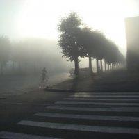 Утро туманное... :: Людмила Жданова