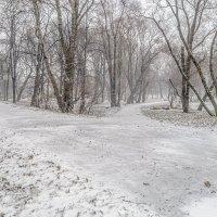 Первый день зимы :: Valeriy Piterskiy