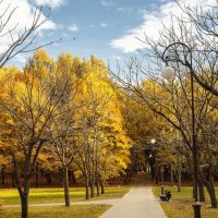 Autumn in Minsk :: Alex Okhotnikov