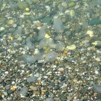 А вода, вода по камушкам... :: Александр
