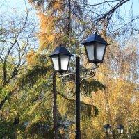 фонарь :: Андрей Петренко