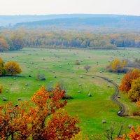 Осень :: яков боков