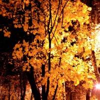 Осень :: Иван