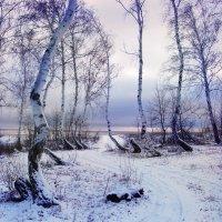 Первый снег :: Ольга Нарышкина
