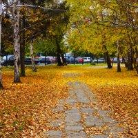 Осенняя пора-очей очарованье... :: Ксения Томилова