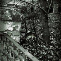 Забытый венский стул :: Инесса Кан