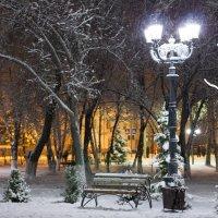 парк :: Елена Загорская